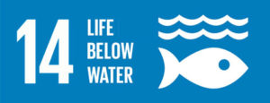 14 life below water - ensure conservation of life below water